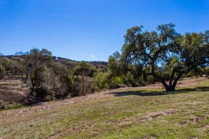 Venado-Springs-Guest-Ranch-and-Hunting-Ranch-Texas-Hill-Country-020