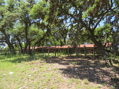 Venado-Springs-Guest-Ranch-and-Hunting-Ranch-Texas-Hill-Country-047