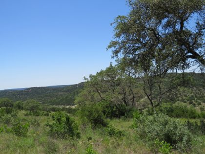 Venado-Springs-Guest-Ranch-and-Hunting-Ranch-Texas-Hill-Country-050