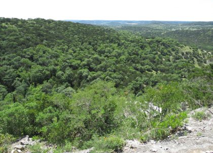 Venado-Springs-Guest-Ranch-and-Hunting-Ranch-Texas-Hill-Country-052